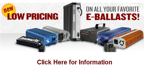 New Pricing E Ballast